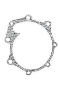 Ford Water Pump Gasket